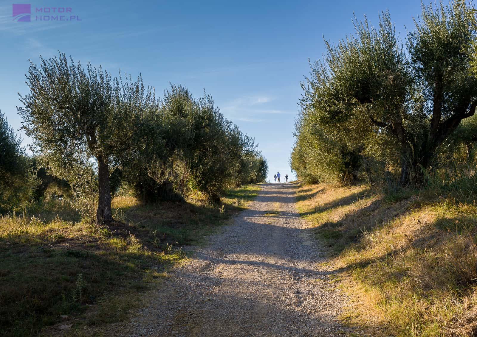Włochy - Jezioro Trasimeno